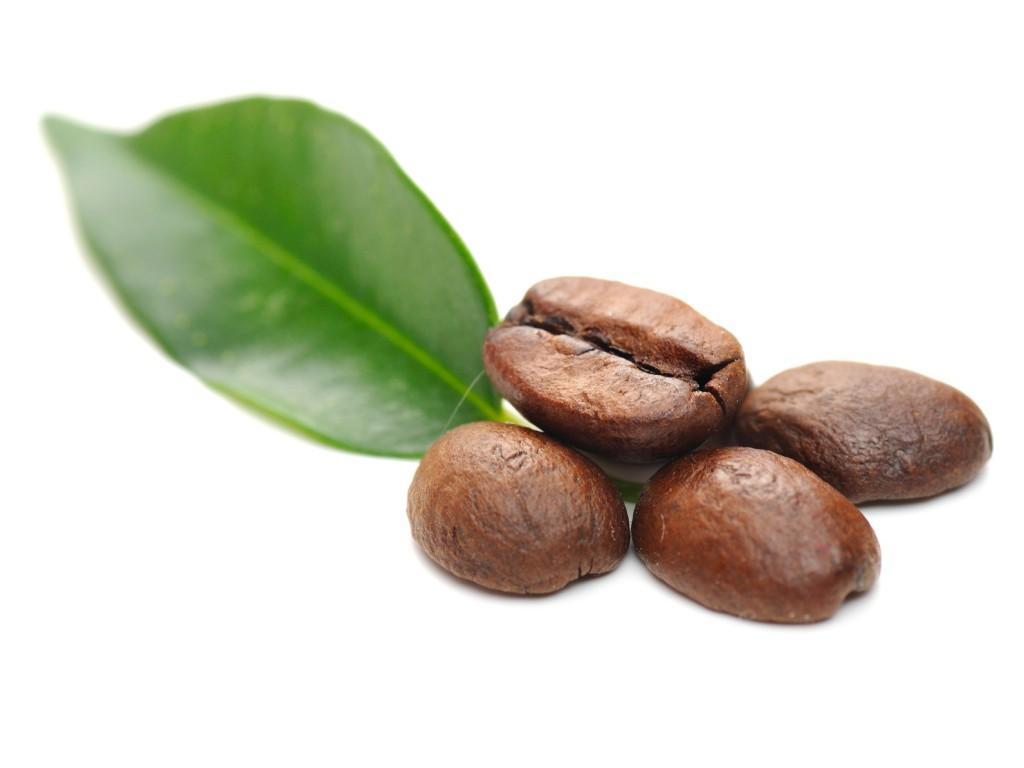 café cafeína