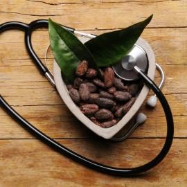 Propiedades cacao