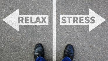 ¿El estrés engorda o adelgaza? ¡Descúbrelo!