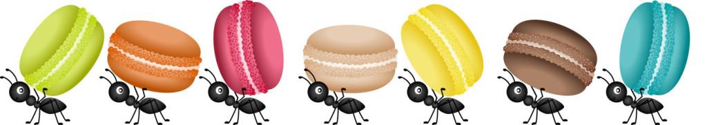 La nueva fuente de proteínas…¿los insectos?