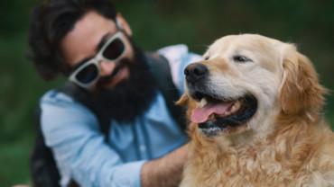 Como evitar o mau hálito do teu cão?